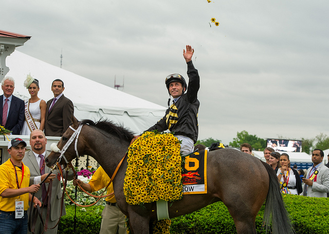 The Preakness image